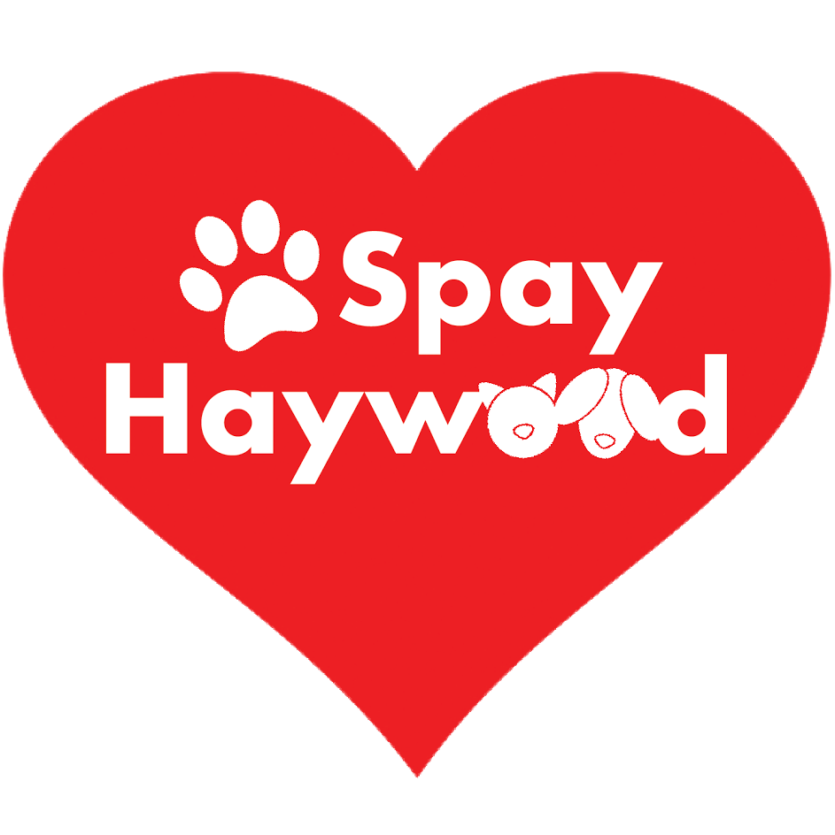 Spay Haywood